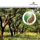 Corktech-Brochure