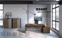 asset - 2