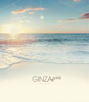 Ginza + - 1