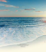 Ginza + - 77