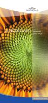 PATTERNED GLASS - DECORGLASS