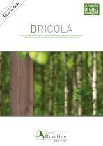 BRICOLA