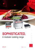 Modular cooking units Salvis
