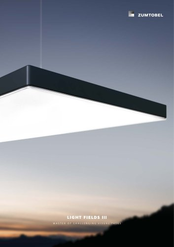 LIGHT FIELDS III