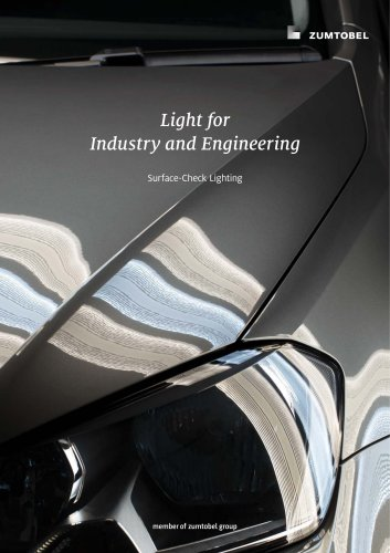 Light for Industry and Engineering: Surface-Check Lighting
