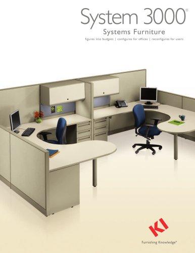 System 3000