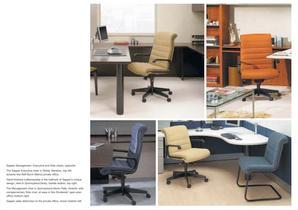 Ergonomic Seatings - 13