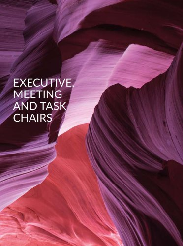 Executive, Meeting and Task Chairs
