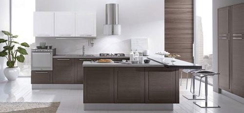 cozinha contemporânea / em madeira / em U / lacada