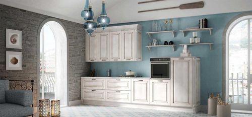 cozinha clássica / em madeira / lacada / fosca