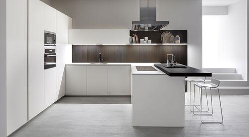cozinha contemporânea / em vidro / em aço inox / em aço