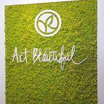 parede verde para ambiente interno