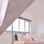 reboco decorativo / para ambiente interno / para parede / com cal